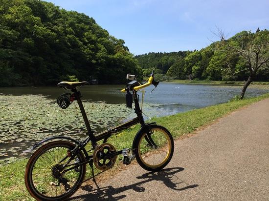 昭和の森公園