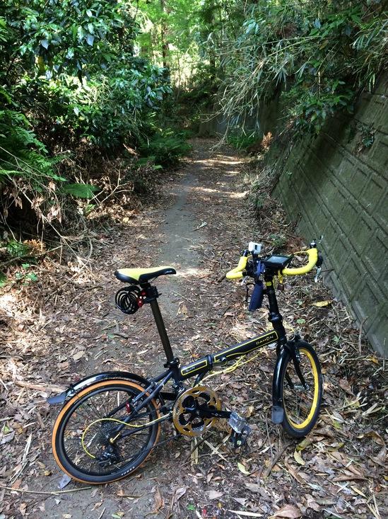 昭和の森公園からの山道
