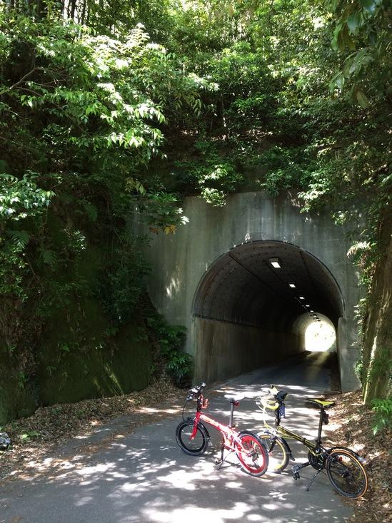 緑のなかの小さなトンネル