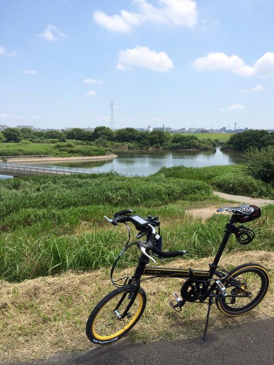 江戸川CRの気持ちのいい景色