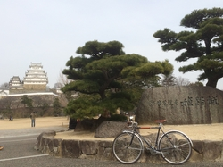 姫路城の門を入ったあたり