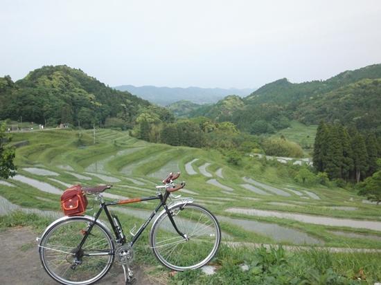 ついに千枚田の景色を拝めました。癒されます。