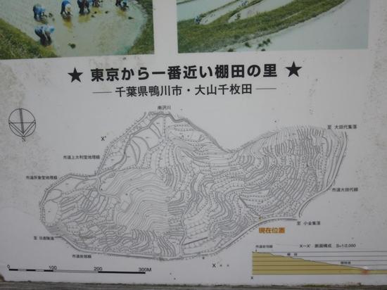 千枚田というだけあってかなりの広さ